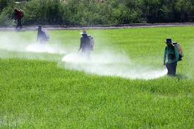 Reducing Toxic Pesticides